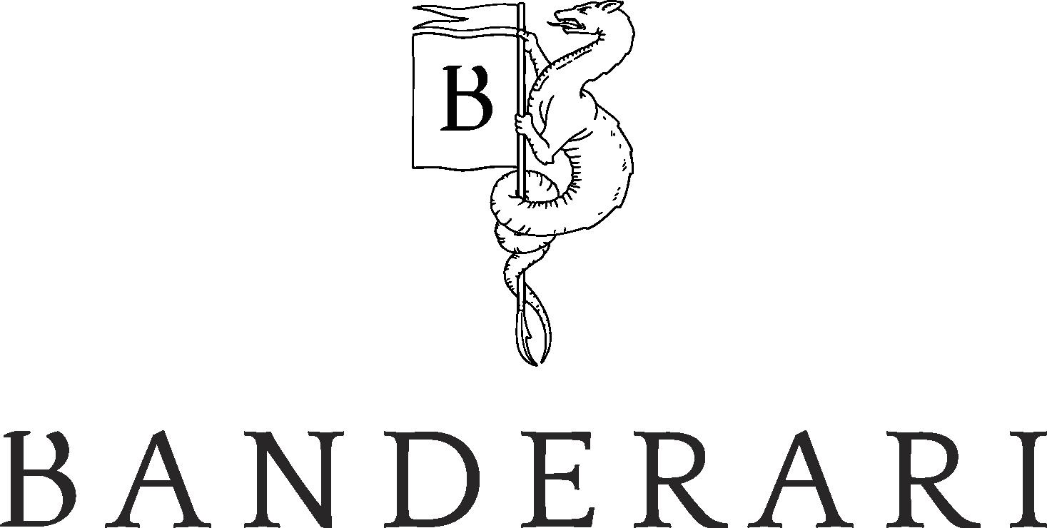 logo banderari 2021 def